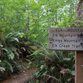 The Elk Mountain Trail is very well signed.- Elk Mountain to Kings Mountain Traverse
