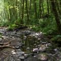 Wilson River.- Elk Mountain to Kings Mountain Traverse