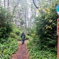 The Blacklock Point Trailhead is near the Cape Blanco airport.- Blacklock Point Hike