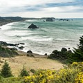 View to the south--can you spot the Cape Blanco lighthouse?- Blacklock Point Hike