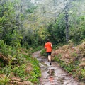 Runners find solitude on the trail to Blacklock Point.- Blacklock Point Hike