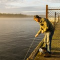 Will there be crabs on this pull?- Winchester Bay Crabbing