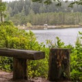 View of the day use area from the trail.- Eel Lake Trail Hike
