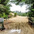 There is direct access to OHV areas from the campground.- Honeyman State Park Campground
