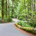 The entire area is densely wooded.- Honeyman State Park Campground