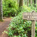 Trail to the hiker/biker camp.- Honeyman State Park Campground