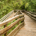 Boardwalks offer access to the viewing platforms.- Oregon Dunes Day Use Area