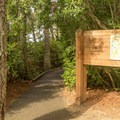Starting point for the dune trails.- Oregon Dunes Loop Hike