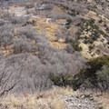 Singletrack seen from Buffalo Peak.- Squaw Peak Loop