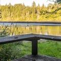Sloughside Marsh viewpoint.- South Slough Loop Hike