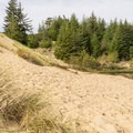 The large dunes come right up to Hall Lake.- Hall + Shuttpelz Lake Trail