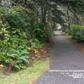 Trail to the restrooms.- Cape Blanco State Park Campground