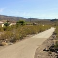 Paved trail at the trailhead.- Black Mountain Summit