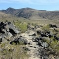 Typical trail section at lower elevations.- Black Mountain Summit