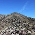 The trail becomes faint as you approach the summit.- Black Mountain Summit