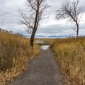 The trail to Utah Lake.- Saratoga Hot Spring