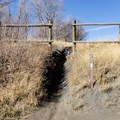 Cross the fence at the trail marker to begin the Buffalo Peak Trail.- Squaw Peak Loop