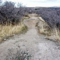 A few table top jumps on the singletrack skills trails.- Draper Cycle Park