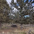There's a small picnic area with shade just near the parking area.- Rimrock Springs Wildlife Management Area