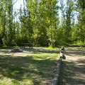 Typical campsite at Jefferson Hunt Campground.- Jefferson Hunt Campground