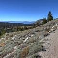 Climbing to views over Lake Tahoe.- Mount Rose Summit Trail