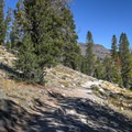 The first portion of the trail is relatively easy and opens to views of the summit.- Mount Rose Summit Trail