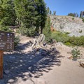 Several trails intersect with each other along this hike. This first intersection is the only well-signed junction.- Mount Rose Summit Trail