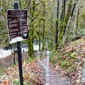 Stairs leading down to Lake Creek Falls.- Lake Creek Falls Recreation Site