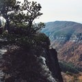 One of the many hidden campsites offering awesome views.- Table Rock near the Linville Gorge Wilderness