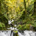 Emerald Falls.- Emerald Falls
