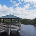 There are many gazebos for shade and information signs along the way.- Wakodahatchee Wetlands