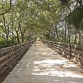 A welcomed shaded section of the trail.- Wakodahatchee Wetlands