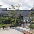 Morikami Japanese Gardens.- Morikami Japanese Gardens