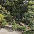 The Morikami Japanese Gardens.- Morikami Japanese Gardens