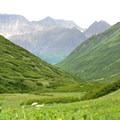 Raven Creek Valley.- Crow Pass Trail Thru-Hike