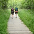 Final leg before reaching the Eagle River Visitor Center.- Crow Pass Trail Thru-Hike