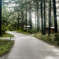 The Cape Blanco State Park Campground.- Cape Blanco State Park