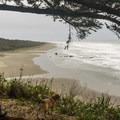This spot demands a time out.- Otter Point State Recreation Site