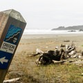 The Oregon Coast Trail. continues down the beach- Otter Point State Recreation Site