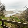 After a descent through dense vegetation, the beach is reached.- Otter Point State Recreation Site