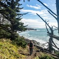 Marvelous views from this trail.- Cape Sebastian Trail Hike