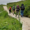A portion of the trail leading to Williwaw Lake leads over a boardwalk.- Williwaw Lakes + Mount Elliot Scramble