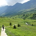 Hikers returning to the Glen Alps Trailhead on the Williwaw Lakes Trail.- Williwaw Lakes + Mount Elliot Scramble
