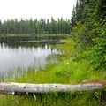 Tanaina Lake, Nancy Lake State Recreation Area.- Nancy Lake Canoe Trail, Lynx Lake Loop
