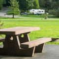 Meadow campsite.- Quosatana Campground