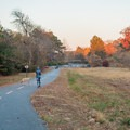 There is plenty of open green space along the trail for dog walking.- Noonday Creek Trail
