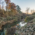 Still waters of Noonday Creek.- Noonday Creek Trail