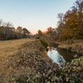 The creek near the trailhead.- Noonday Creek Trail