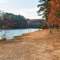 A large clearing that is great for playing with dogs in the water.- Murphy Candler Park