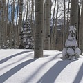 A beautiful winter day in Utah along the Willow Heights Trail.- Willow Heights Snowshoe